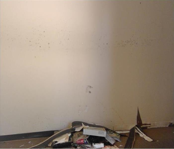 water damaged wall with mold visibly forming